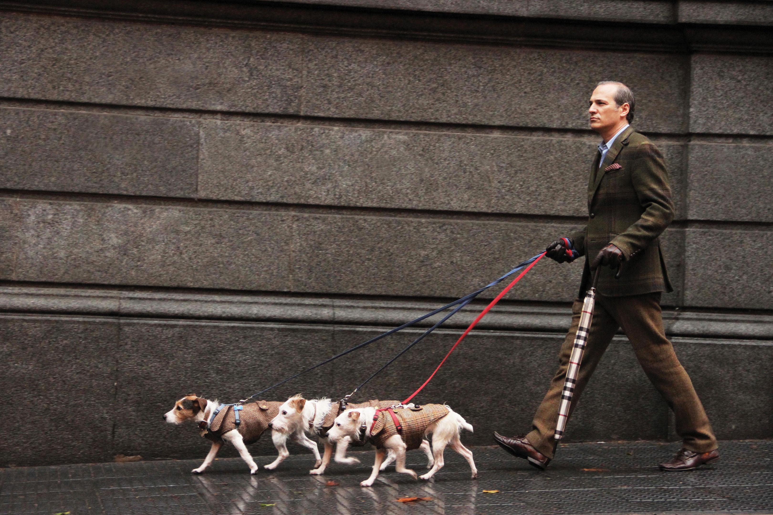 Javier Iturrioz junto a tres de sus perros